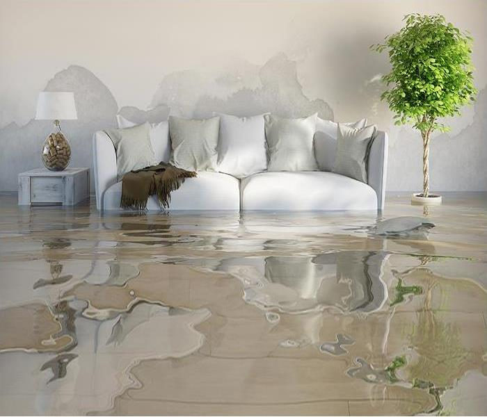 Water Damage Who to Call After Water Damage