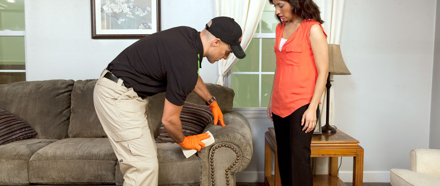 Ashland, OH carpet upholstery cleaning